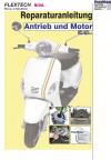 Reparaturanleitung RIS FLEX TECH Riva Antrieb und Motor